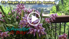 It Might as well be Spring - video